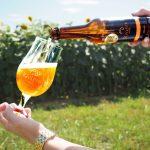 C'est la Journée Internationale de la Bière !